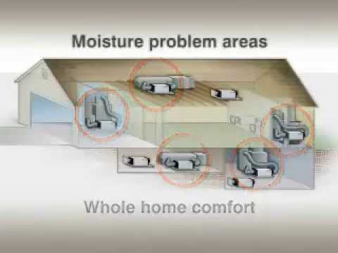 Honeywell Truedry Dehumidifier Youtube. Honeywell Truedry Dehumidifier. Wiring. York Dehumidifier Whole House Diagram At Scoala.co
