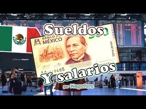 Sueldos Y Salarios De Los Trabajadores Publicos De Mexico