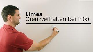 Limes, Grenzverhalten bei ln(x), Achtung: Ränder des Definitionsbereich   Mathe by Daniel Jung