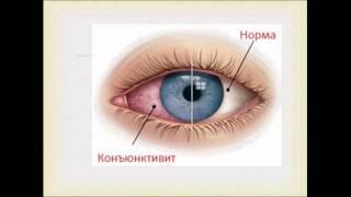 Гигиена зрения. Урок биологии.