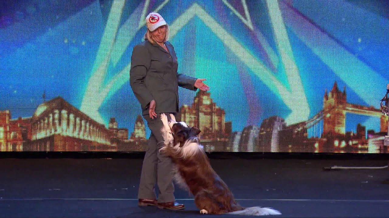 Catch Jules and Matisse the dog in action | Britain's Got Talent 2015