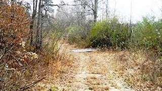Homes for Sale - 00 Collins Road Walhalla SC 29691 - Diannia Griffith