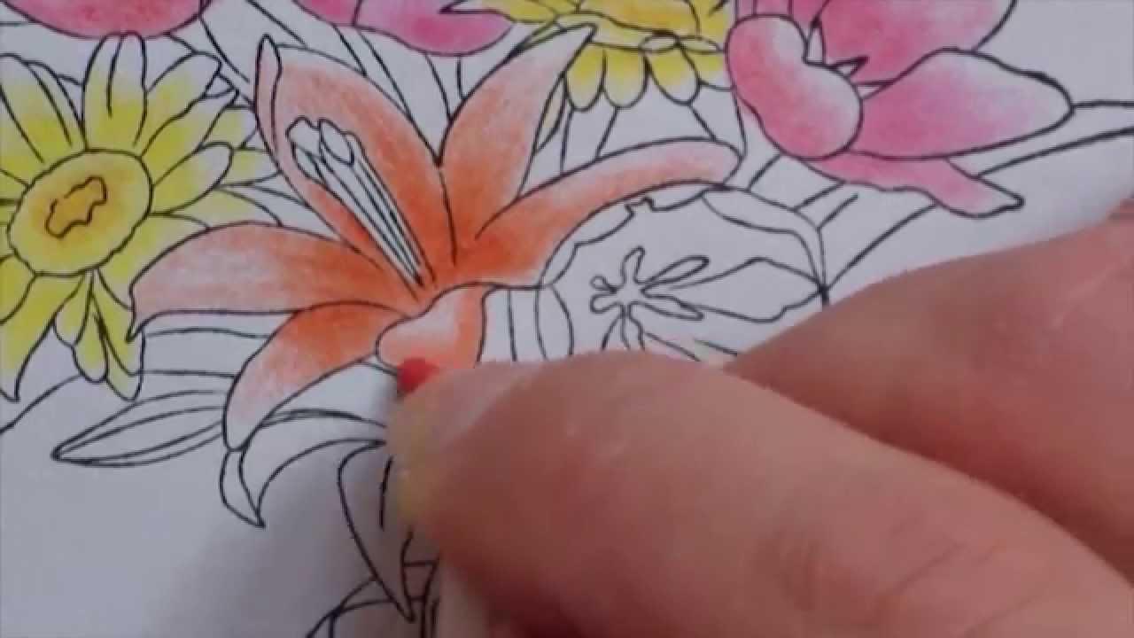 colorier en dgrad sans feutres part1 youtube - Colorier Une Photo