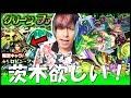 【モンスト】最新の獣神化『茨木童子』欲しい!!グリーンファンタジー引くぜ!!