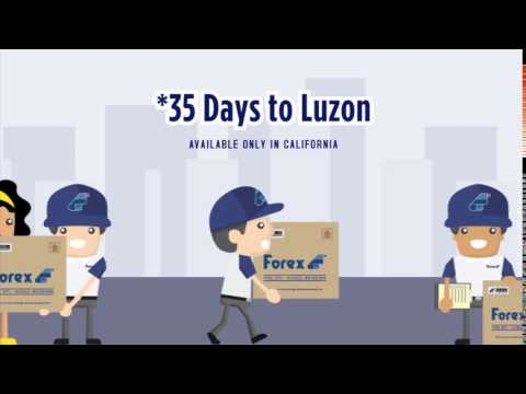 Forex cargo edmonton contact number