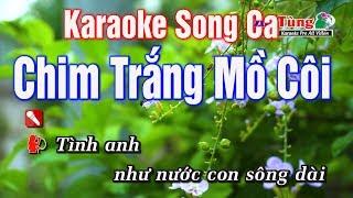 Karaoke    Chim Trắng Mồ Côi Song Ca    Nhạc Sống Duy Tùng