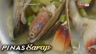 Pinas Sarap: Iba't ibang shellfish na matitikman sa Zambales, ibinida sa 'Pinas Sarap'