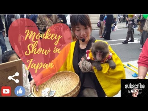 Smart Money Street Show in Shizuoka || Japan