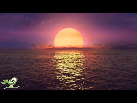 Relaxing Sleep Music: Ocean Waves, Fall Asleep Fast, Relaxing Music, Sleeping Music ★146