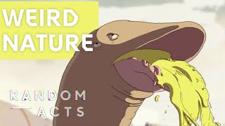 Weird creatures connect by vibrating | [O] by Mario Radev & Chiara Sgatti | Short | Random Acts