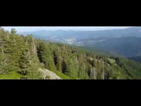 WURZELSTEIN - vidéo 2 : vue sur le Hohneck et la vallée de Munster (2013) -de YouTube · Durée:  2 minutes 11 secondes · vues 74 fois · Ajouté le 06.08.2013 · Ajouté par kikerikidu67
