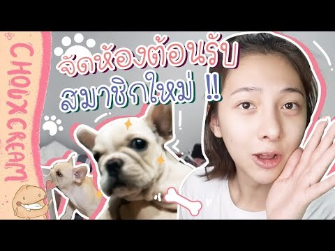 """Vlog...ตื่นเต้นกรุบ!!! จัดห้องเตรียมต้อนรับ """"น้องหมา"""" ตัวใหม่   Chouxcream"""