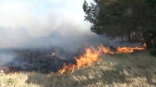 Aude: les pompiers mobilisés pour maîtriser un vaste incendie