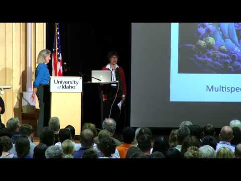 "Anna Tsing & Donna Haraway: ""Tunneling in the Chthulucene"""