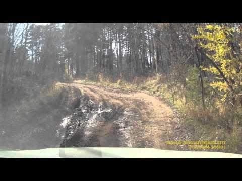 дорога по лесу от большого луга до трассы м-53