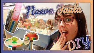 NUEVA JAULA!   DIY Bebedero, juguetes y segunda planta   HAMSTER
