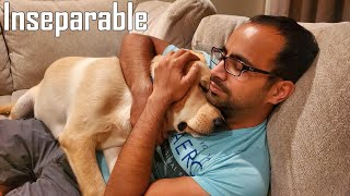 I Didn't Want a Dog But Now We Are Inseparable | Emotional Video