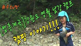 법흥계곡 강원도 영월 남강 캠프  맨손 송어잡기 #06