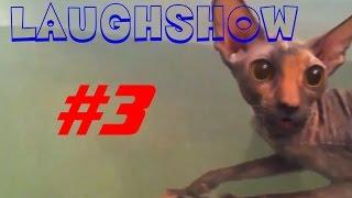 LaughShow | Самое Смешное Видео #3