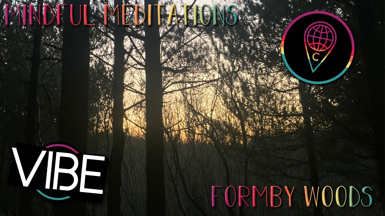 Mindful Meditations: Formby Woods