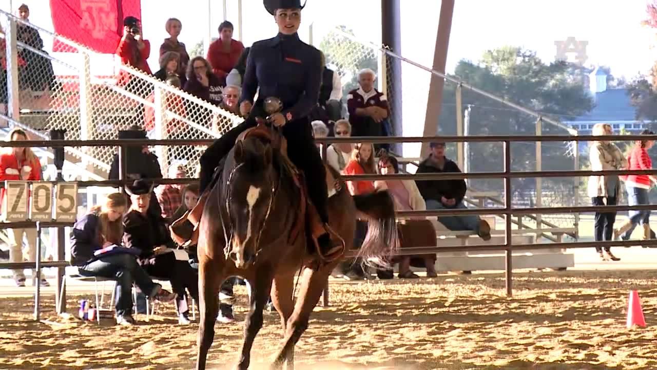 Auburn Equestrian Vs Texas A Amp M Highlights Youtube