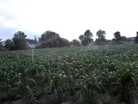 San Simon Coatepec Puebla.  Riego por aspersion para maiz