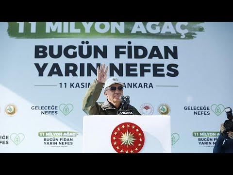 Cumhurbaşkanı Erdoğan: 'Ağaç ve çevre hassasiyetimizi kimsenin terazisi ölçmeye yetmez'