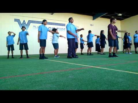 Waitakere college Niue group