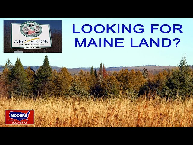 Maine Hunting Fishing Land For Sale | Over 20 Acres Buckley RD Bridgewater ME MOOERS REALTY #8992