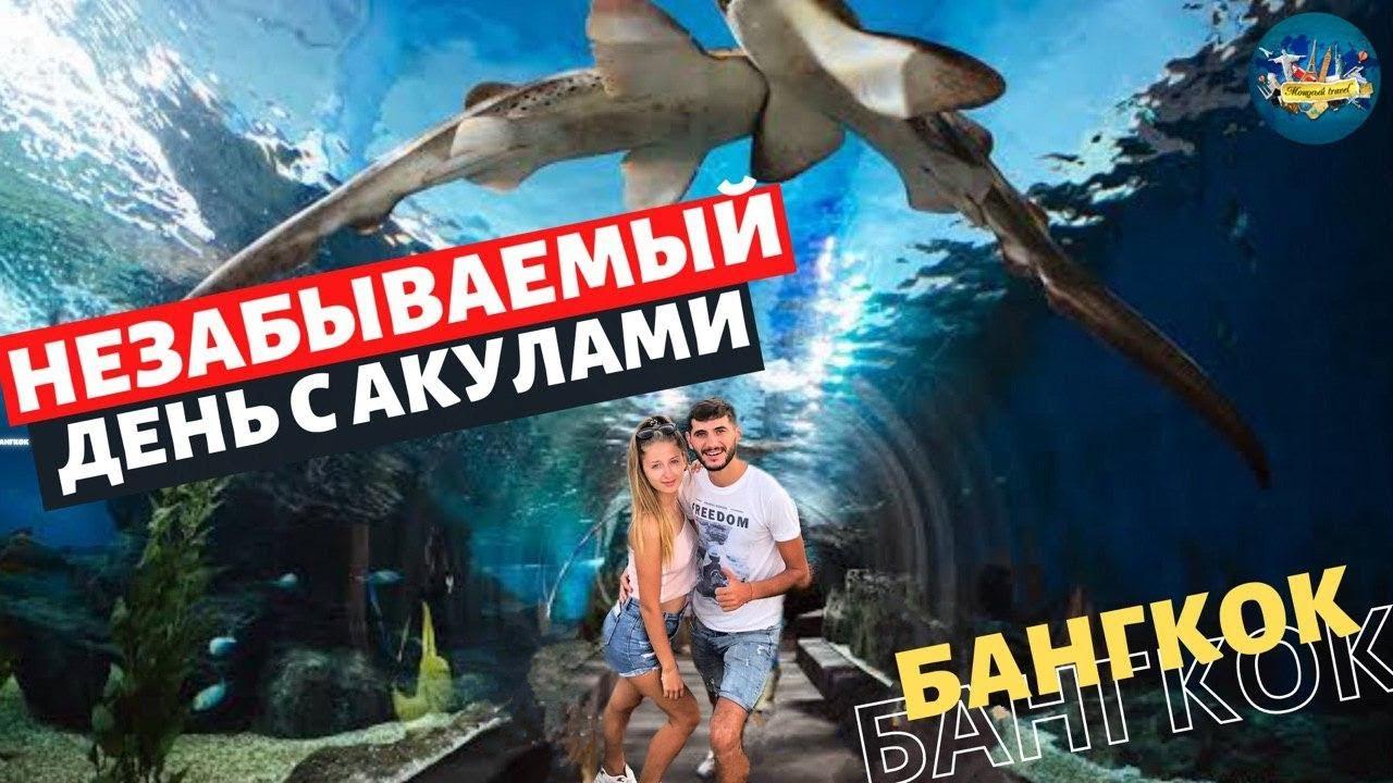 Океанариум в Бангкоке Sea Life Ocean World.Самый большой в Азии.Пингвины.Акулы. Лайфхак по цене !!!