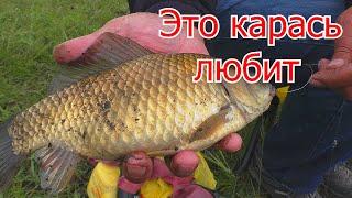 Рыбалка на карася ЧЕСНОЧНАЯ КАША для рыбалки My fishing
