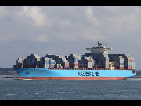 MAERSK SHIP arrives at Port of Busan, South Korea | TIME LAPSE
