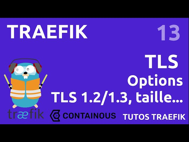 TRAEFIK - 13. TLS : LES OPTIONS & VERSIONS