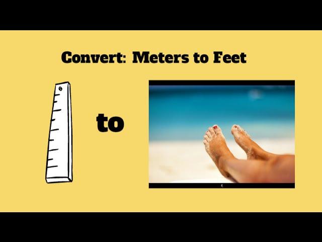 umrechnung meter foot