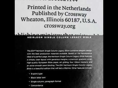 DOMINIQUE JONGBLOED PYRAMIDE PDF