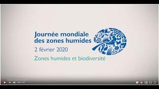 La biodiversité des zones humides est indispensable à la vie