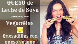 Queso de leche de soya para hacer Veganillas