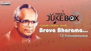Brova Bharama || Classical  Vocal || T.V. Shankaranarayanan