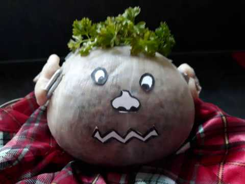 The Haggis Song (How Many Legs has a Haggis?)