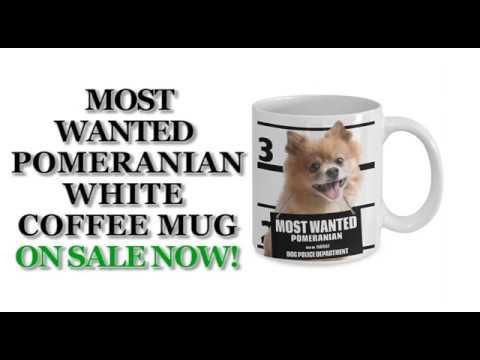 Most Wanted Pomeranian – 11oz White Ceramic Coffee Mug