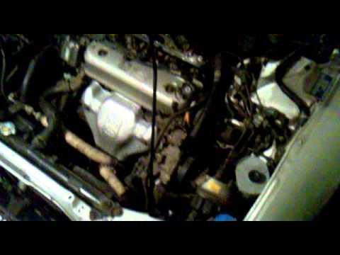 Непонятный гул со стороны ГРМ Honda Accord CE7 1997 г.в.