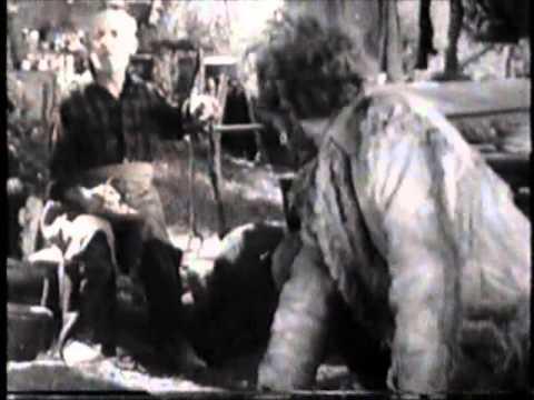 Randolph Scott Buffalo Stampede FULL MOVIE