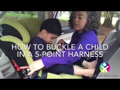 How to buckle a kid in a car seat
