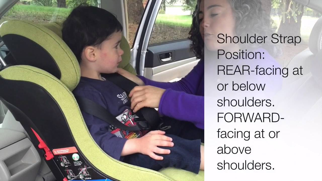 How To Buckle A Kid In Car Seat