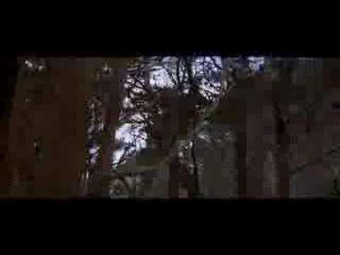 Lord Of The Rings: Fellowhip Of The Ring deleted scene