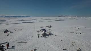 向かったのは、北極圏に位置する世界最大の島グリーンランド。大半が氷...