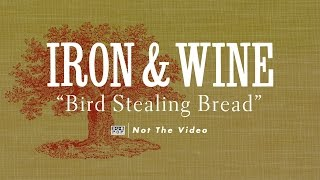Iron and Wine - Bird Stealing Bread (not the video)