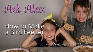 How To Make A Bird Feeder - Ask Alex