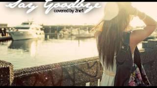 2ne1 - Say Goodbye (covered)