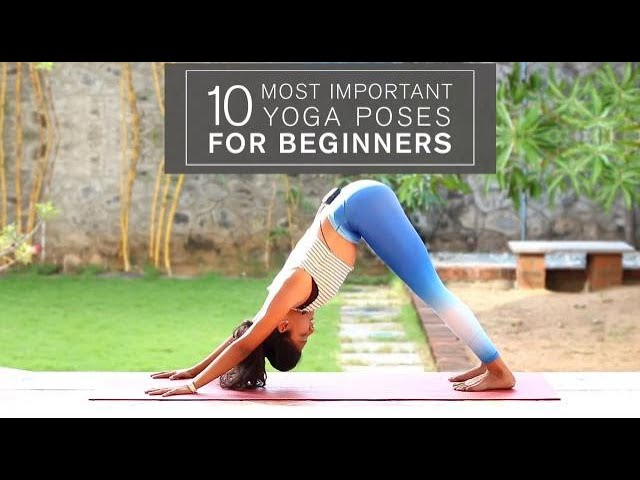 Beginners Yoga Series 10 Most Important Yoga Poses For Beginners Youtube